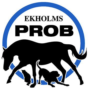 Ny Logo EkholmsPROB_blå 3cm bred.jpg